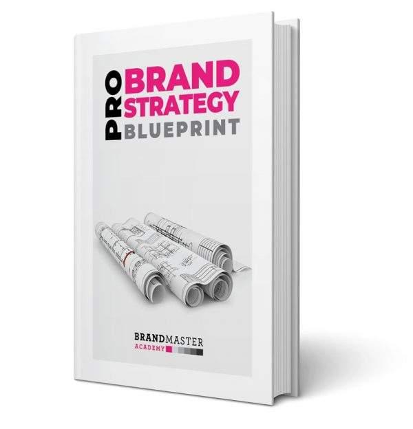 pro brand strategy blueprint