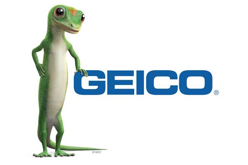 differentiation strategy geico
